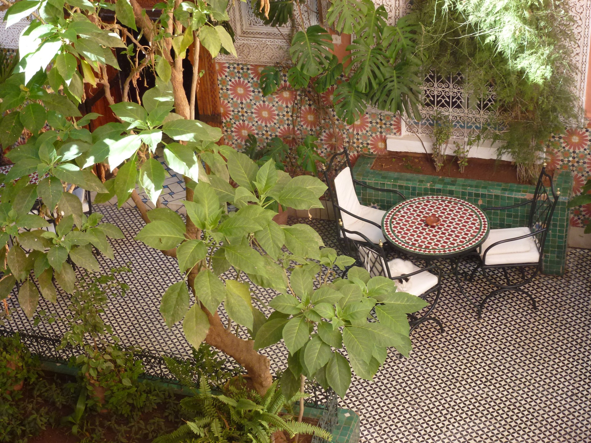 Hotel gallia patio