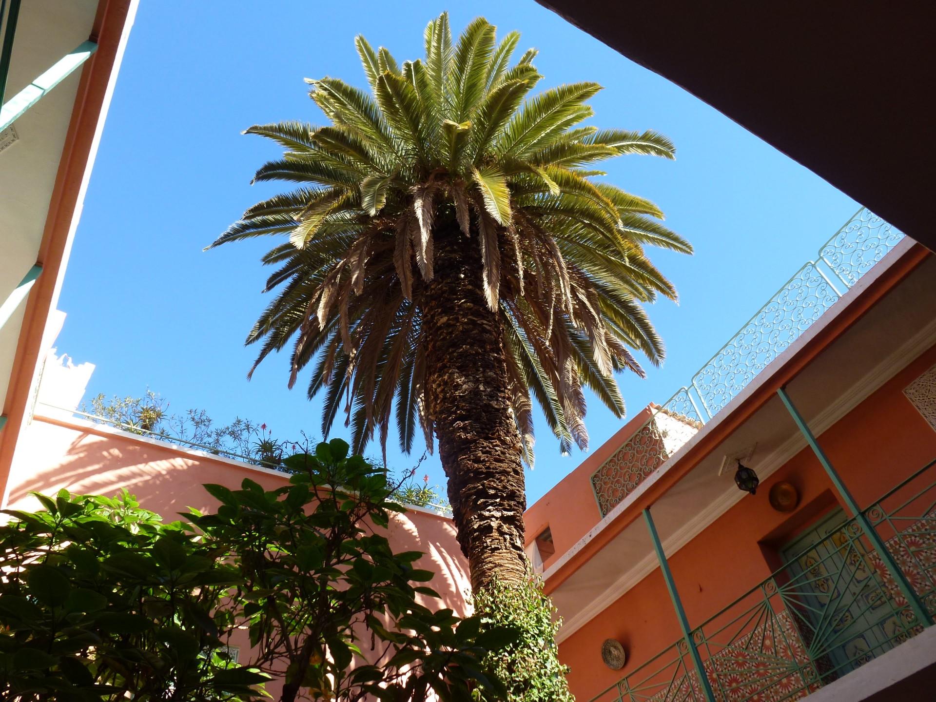 Hotel Jemaa El fna